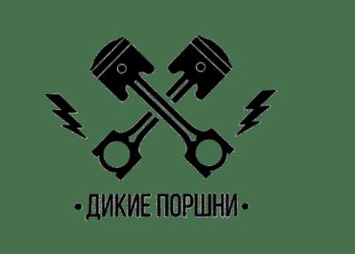 логотип дикие поршни
